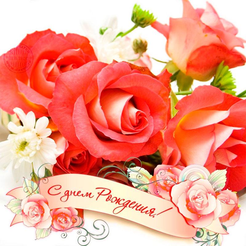 Поздравить роза апа с днем рождения